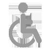 disabilità - pia fondazione di valle camonica