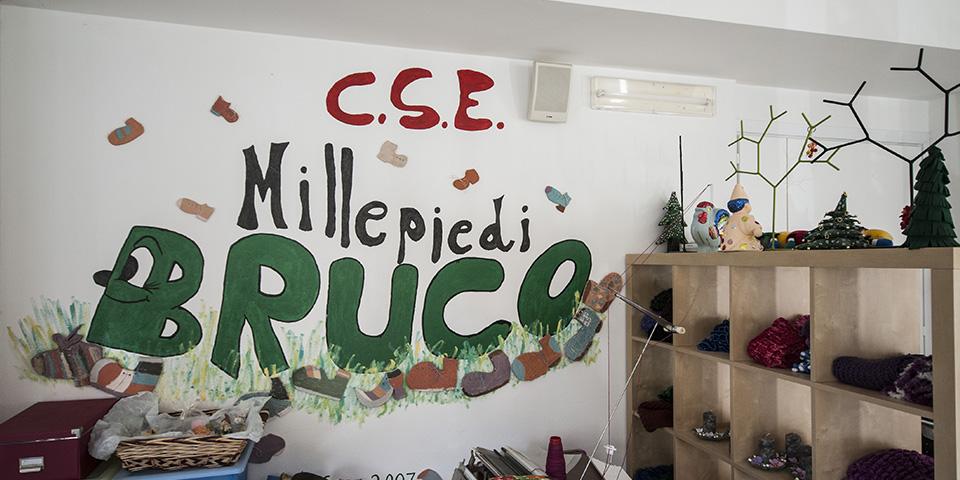 Pia Fondazione Valle Camonica Onlus cse